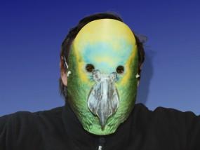 Tiermaske Papagei