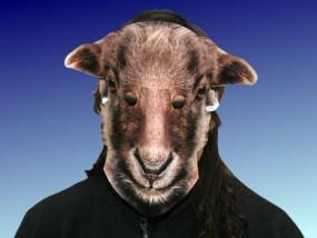 Tiermaske Braunes Schaf